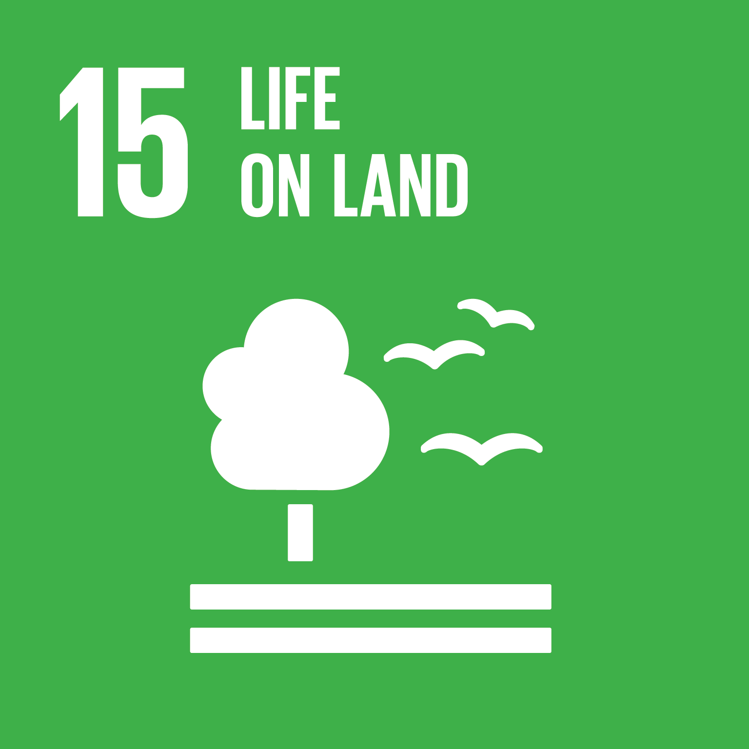 Life on Land - Sustainably manage forests, combat desertification, halt and reverse land degradation, halt biodiversity loss